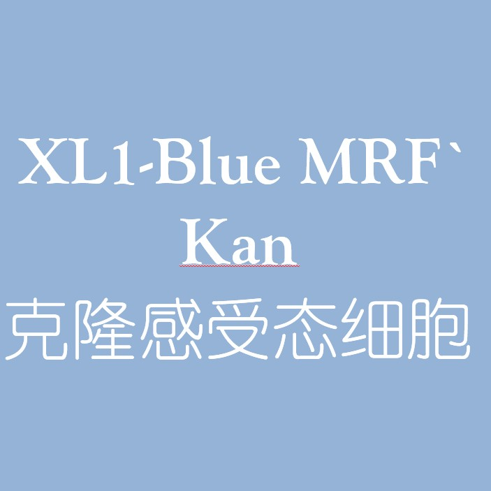 XL1-Blue MRF` Kan