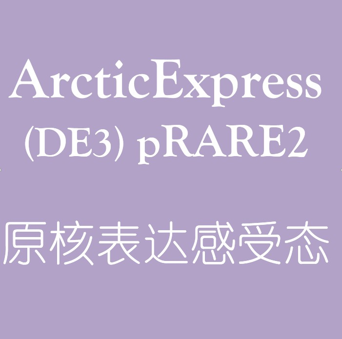 ArcticExpress (DE3) pRARE2